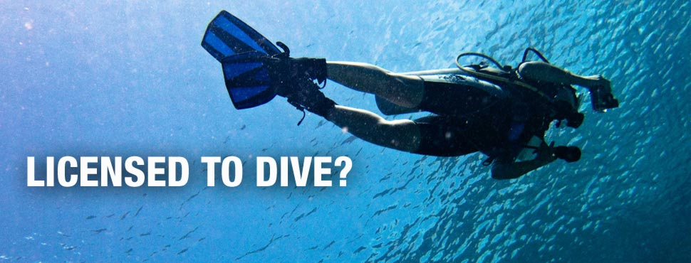 How to Get a Dive License