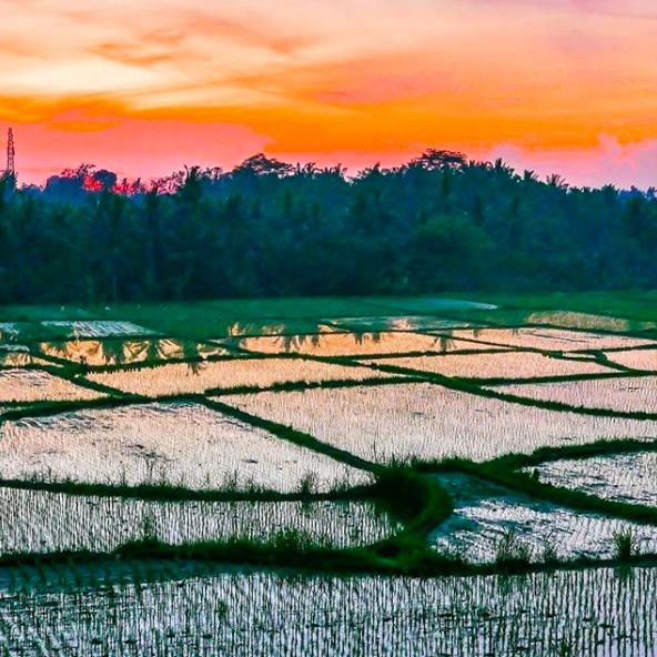 /public/file/article/Bali%20sunrise.png
